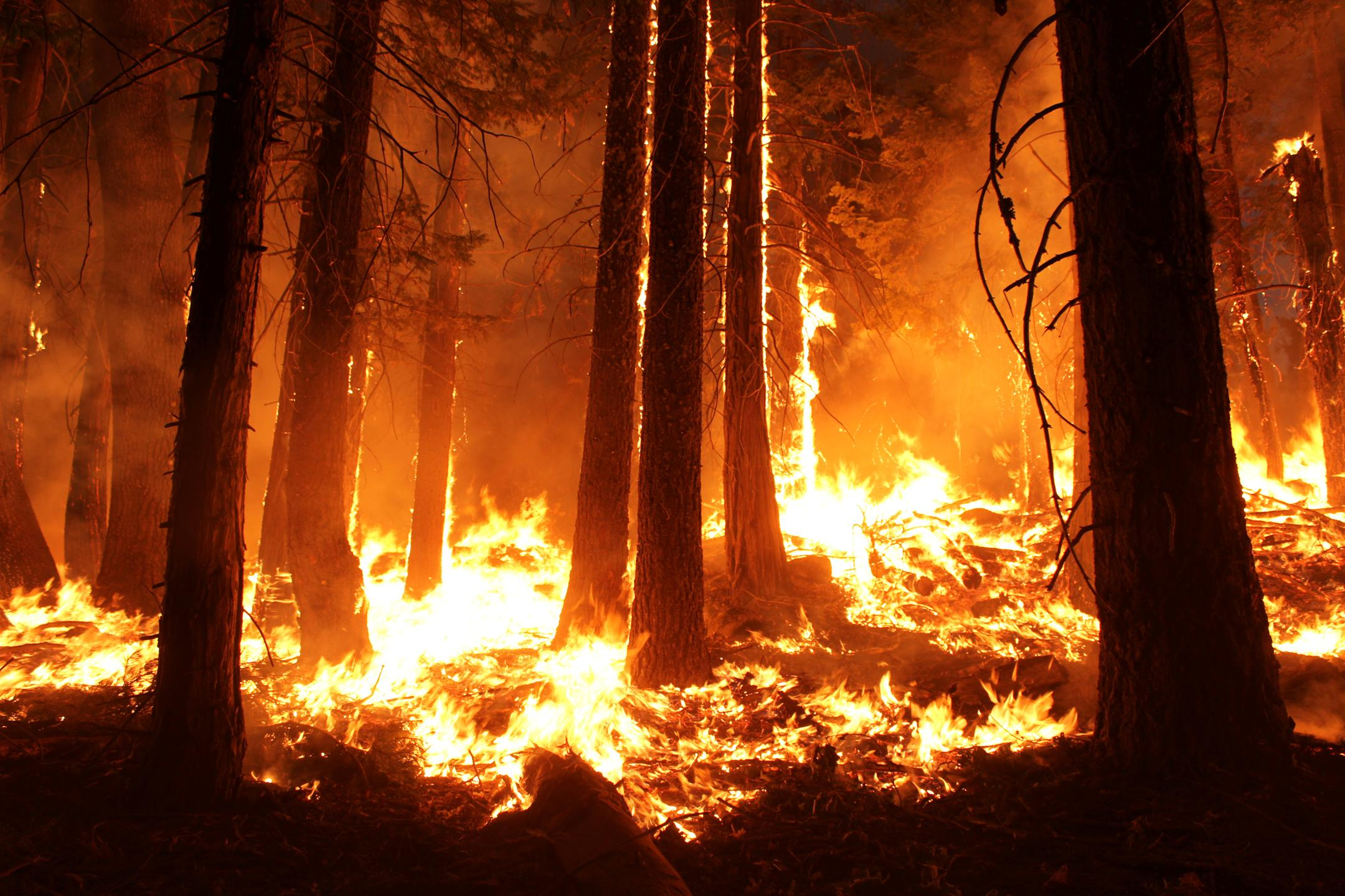 Nasa Jpl S Aviris Classic Data Used To Help Recovery From California Megafires